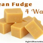 Bean Fudge Recipe: HybridRastaMama.com