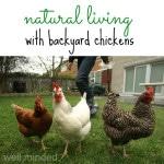 Natural Living with Backyard Chickens: HybridRastaMama.com